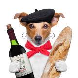 Chien avec une baguette et une boteille de vin